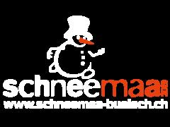 Schneemaa 2019 Logo Bülach - 25 Entertainment GmbH
